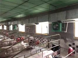 养殖场加温设备1000平方